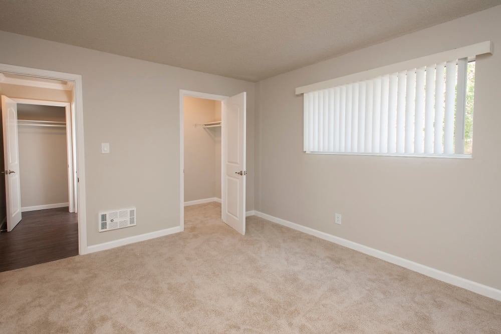 Naturally lit room at Regency Plaza Apartment Homes in Martinez, California