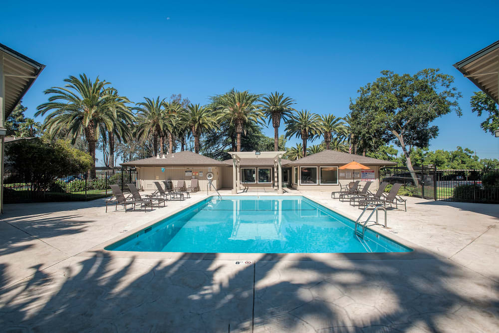 Resort-style swimming pool at Villa Palms Apartment Homes in Livermore, California