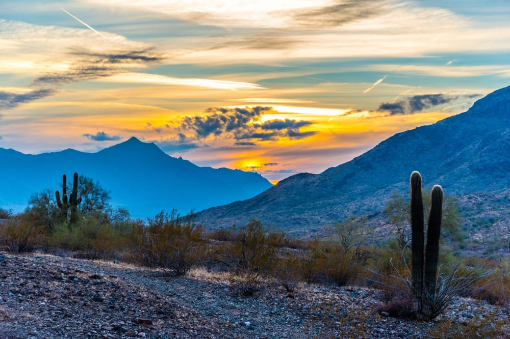 View the neighborhood information at Cyrene at Estrella in Goodyear, Arizona