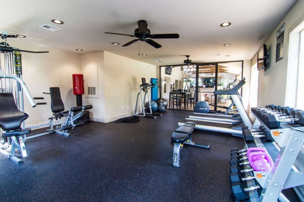 Onsite gym at Deerbrook Forest Apartments