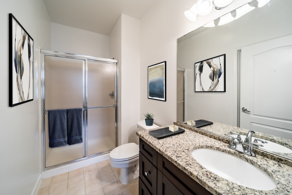 Master bathroom with walk in shower at Sofi Gaslight Commons in South Orange, New Jersey