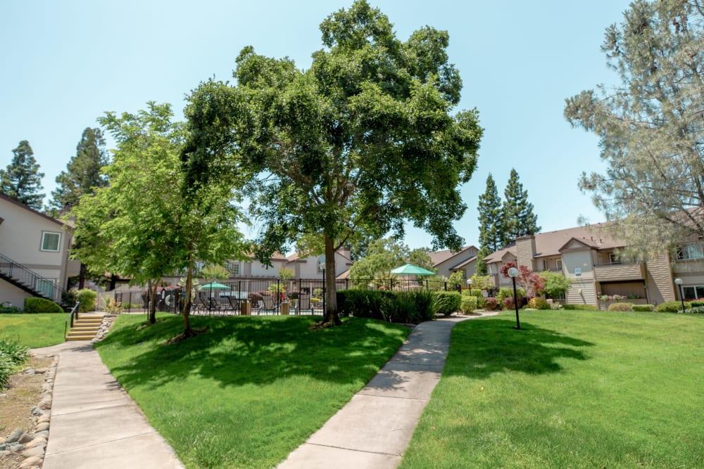 Beautiful landscaped location at Shaliko in Rocklin, California