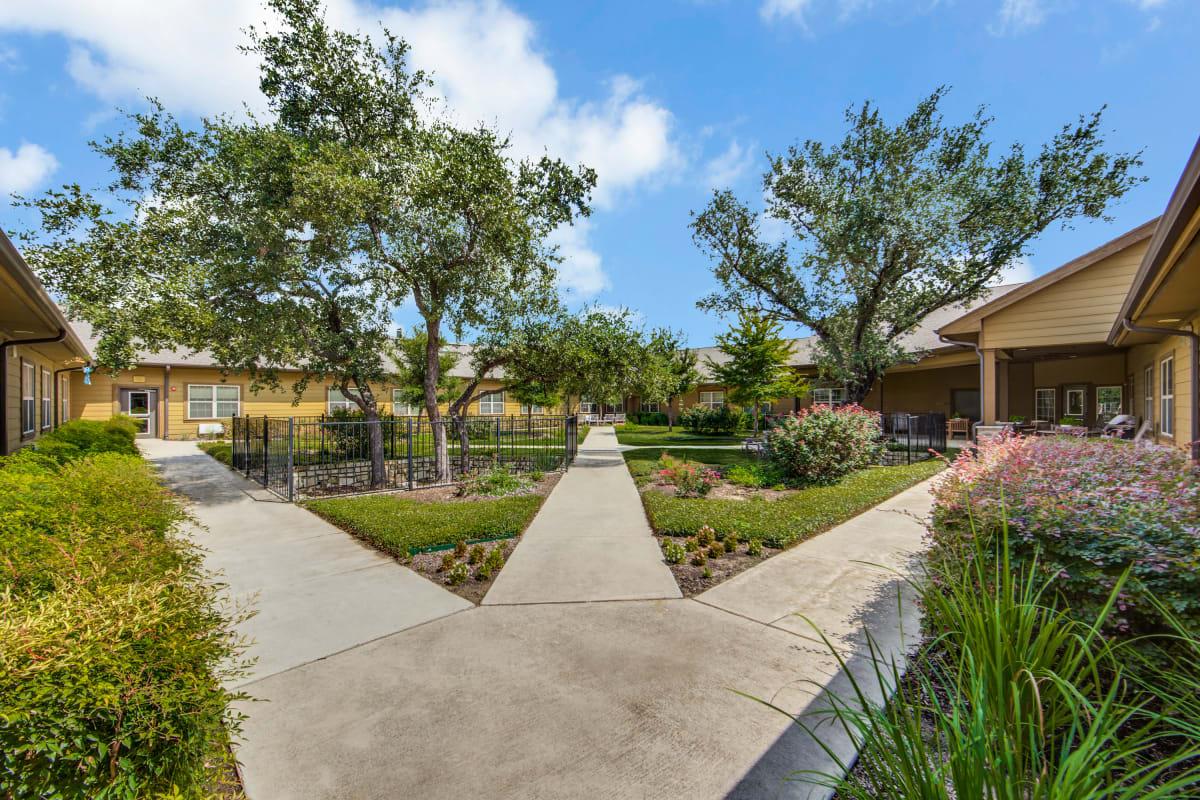 A grassy courtyard at The Landing at Stone Oak in San Antonio, Texas