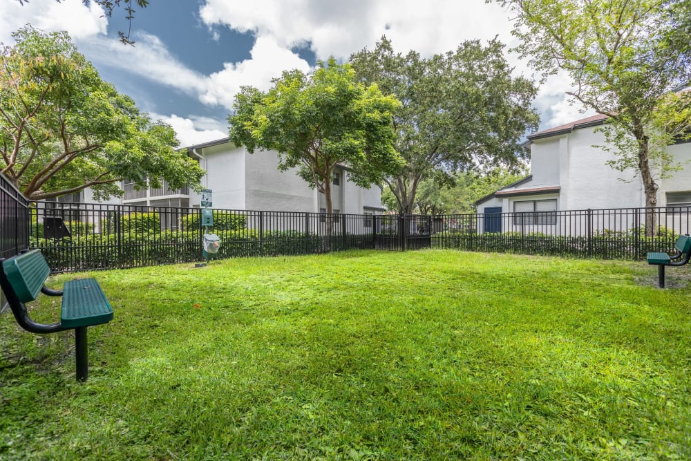 Green grass outside resident buildings at Siena Apartments in Plantation, Florida