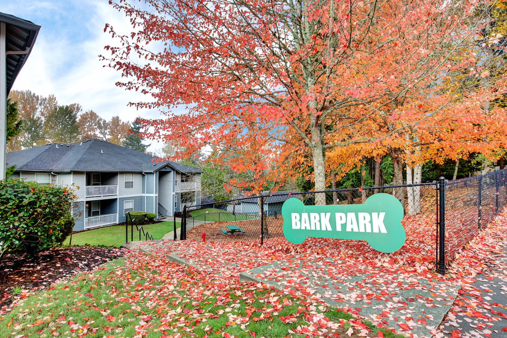 Have fun with your furry friend in the dog park at Pebble Cove Apartments in Renton, Washington