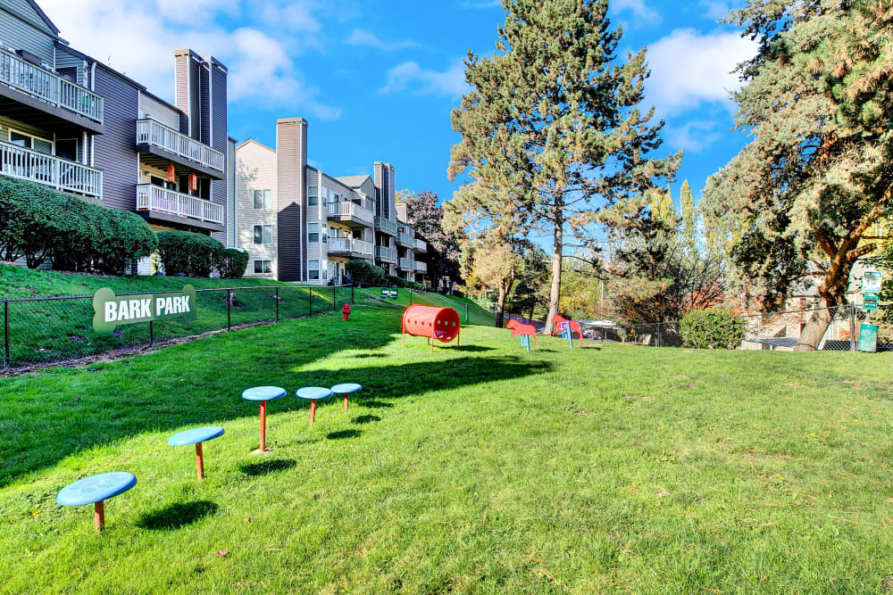 Have fun with your furry friend in the dog park at Park South Apartments in Seattle, Washington