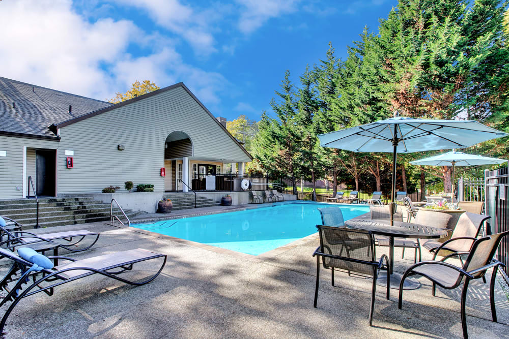 Beautiful resort-style swimming pool with lounge chairs and covered seating at Park South Apartments in Seattle, Washington
