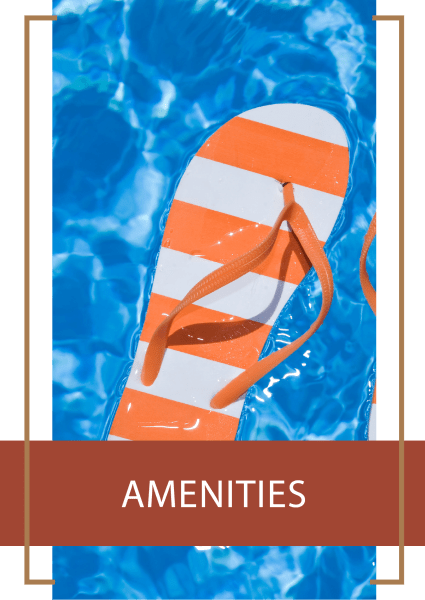 Learn more about the amenities we offer at Renaissance Apartment Homes