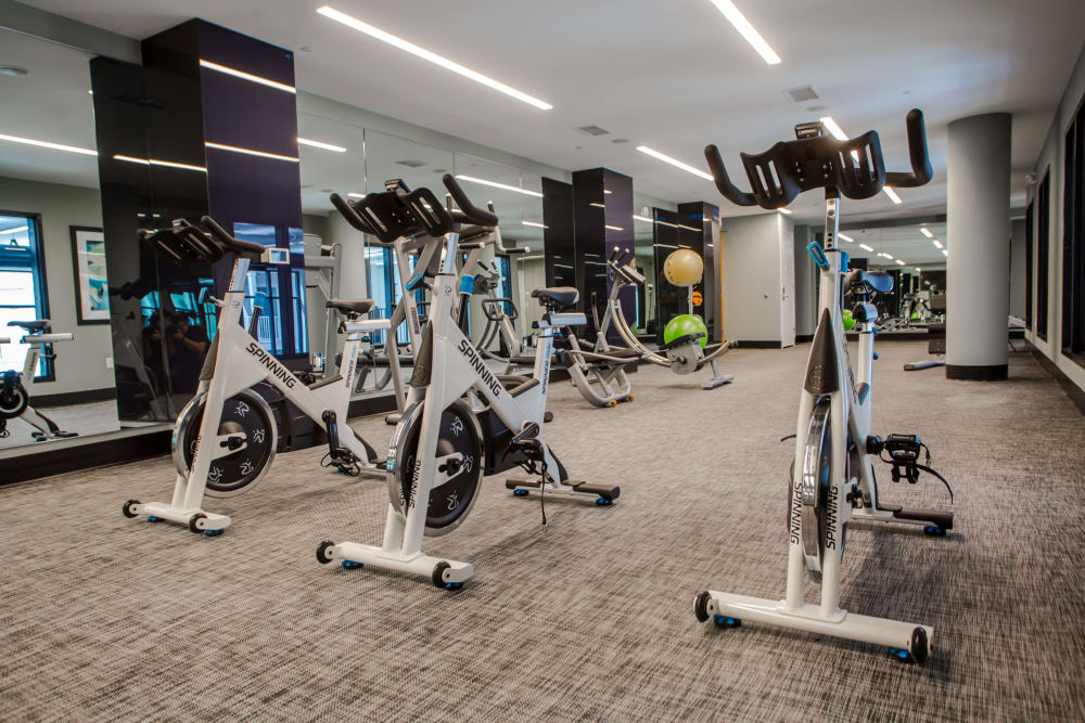 Spin cycles and other equipment in Unique Fitness Center at The Mark Parsippany in Parsippany, New Jersey