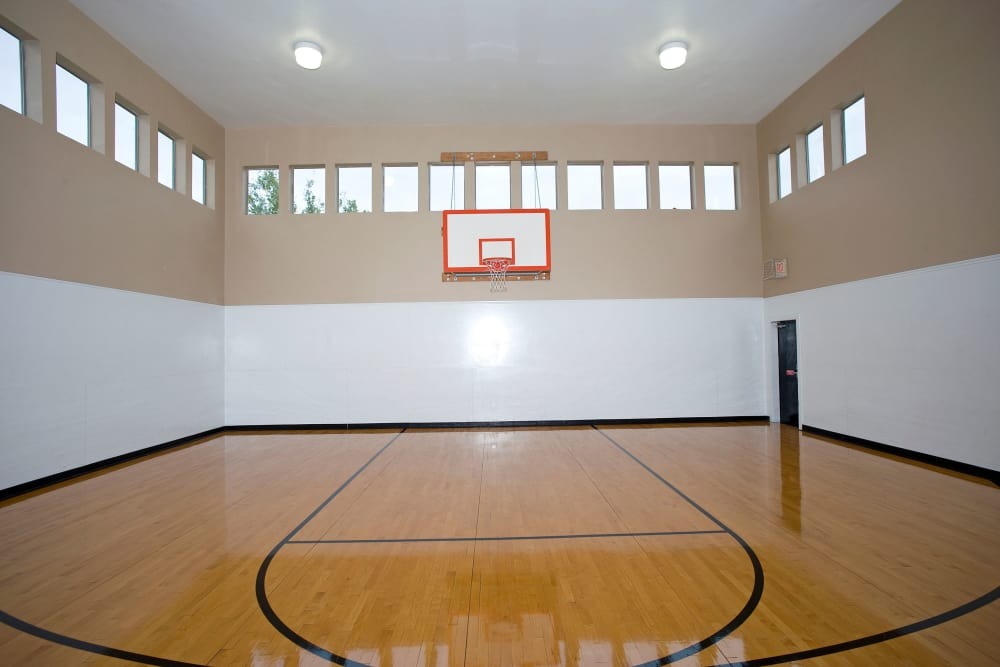Basketball court at The Springs of Indian Creek in Carrollton, Texas