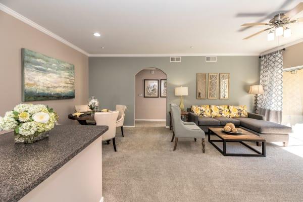 Luxury features at Cross Pointe Apartment Homes in Antioch
