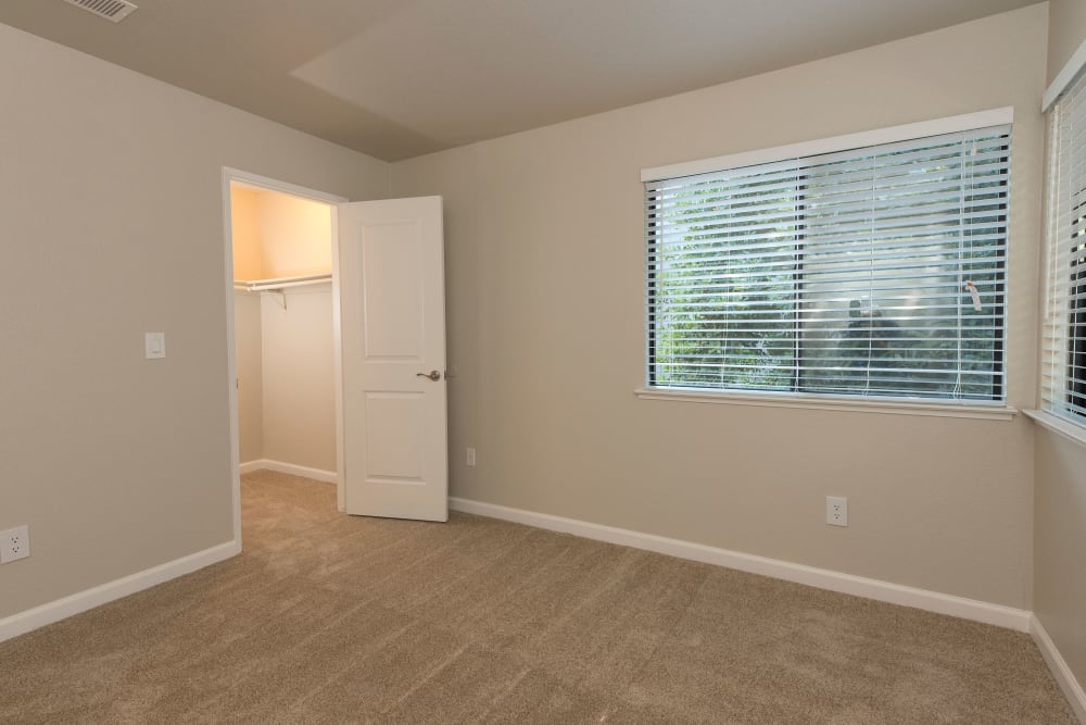 Large room with closet at Park Ridge Apartment Homes in Rohnert Park, California