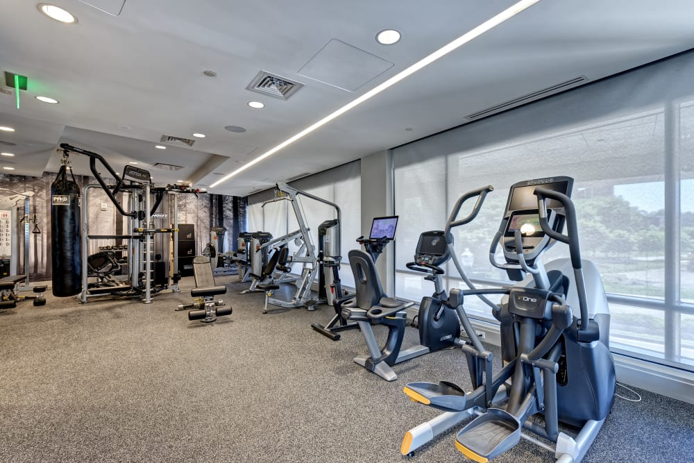 Vela on the Park offers a fitness room in Stamford, Connecticut