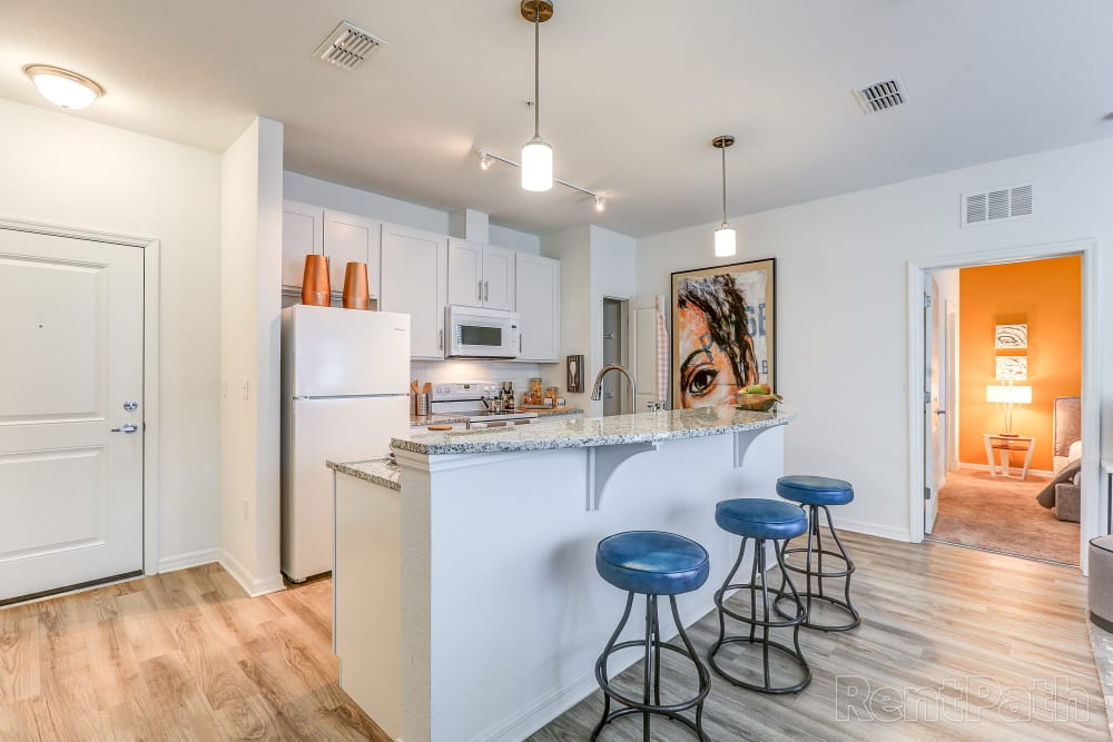 Open kitchen at Lola Apartments in Riverview, FL