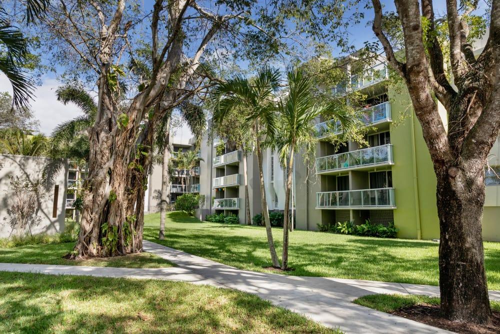Landscaping at apartments in Plantation, Florida