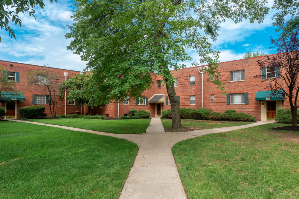 Landscaped apartments with paved walkways at Hamilton Manor