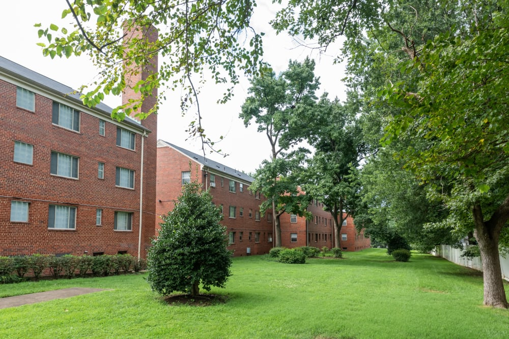 Apartments with lush foliage at Hamilton Manor