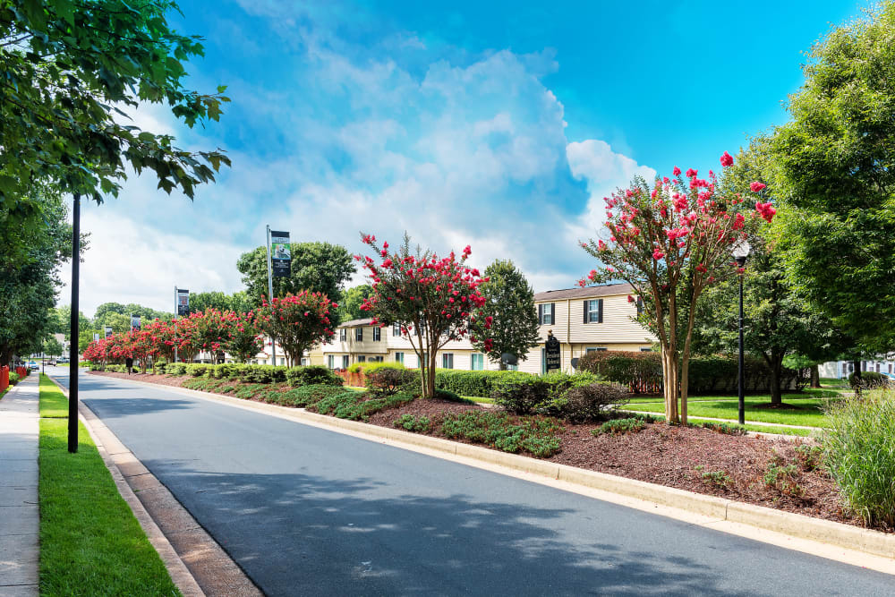 Modern apartments at Whispering Woods