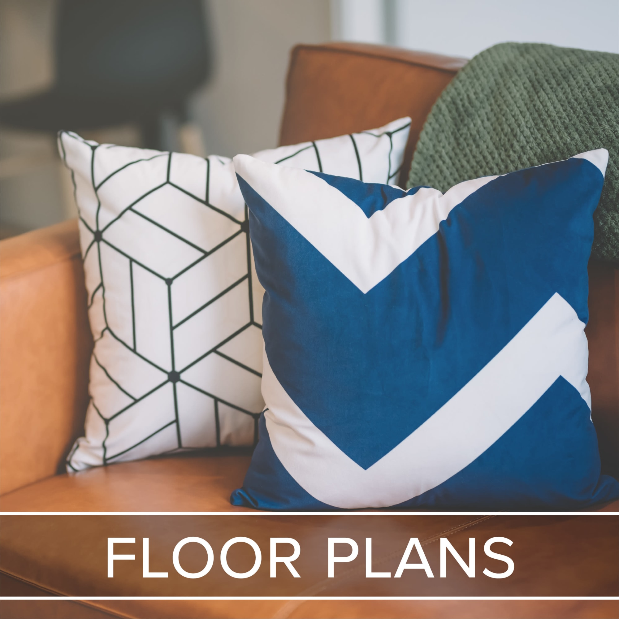 View our floor plan options at IMT Kingwood in Kingwood, Texas