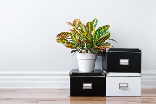 Lockaway Storage offers document storage in California