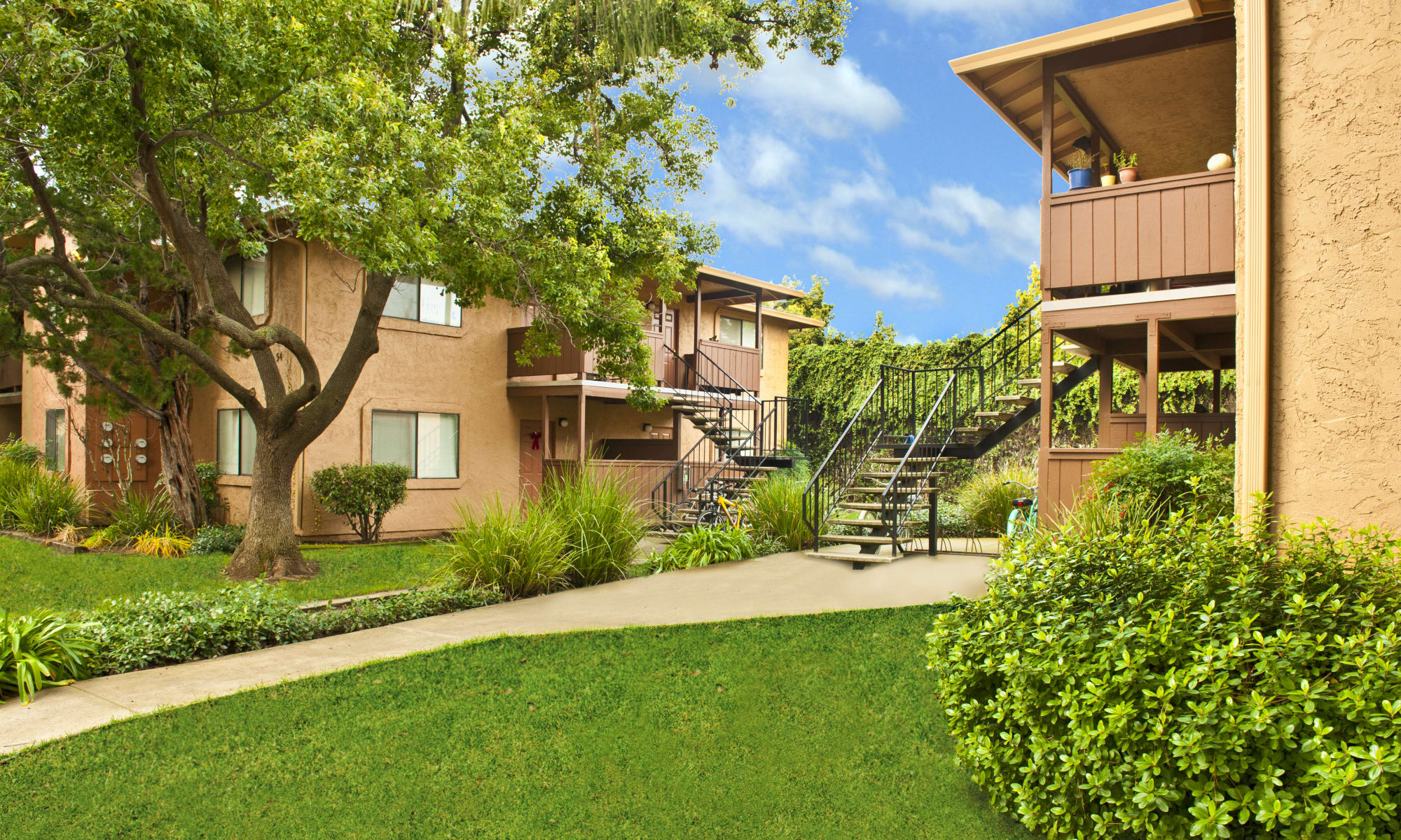 Pine Tree Apartments in Chico, California