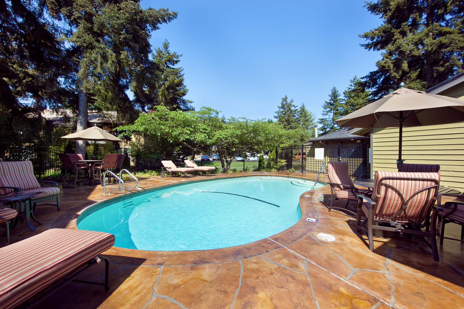 Sparkling swimming pool at Edgewood Park Apartments in Bellevue, Washington