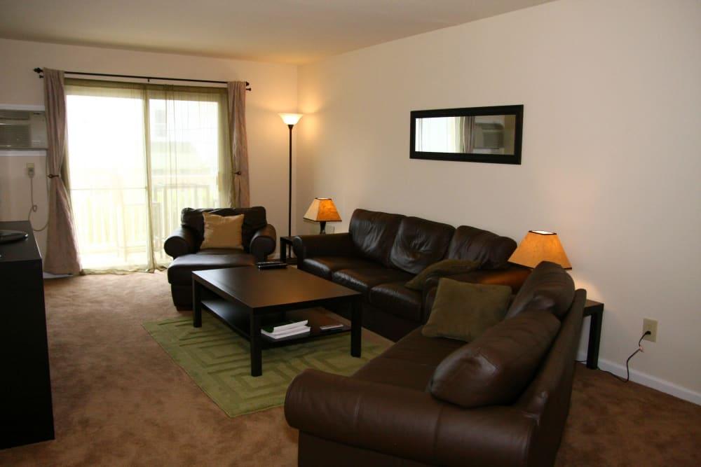 Living Room at Terrace Lake Apartments