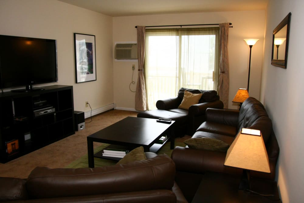 Living room and TV at Terrace Lake Apartments