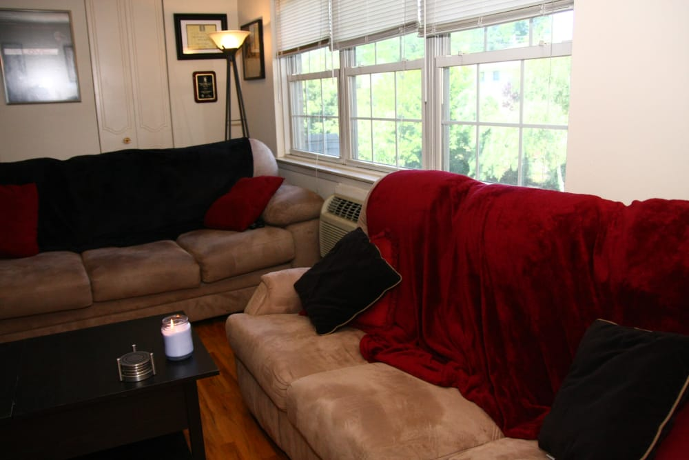 Sun-lit living room at Cloverdale Associates