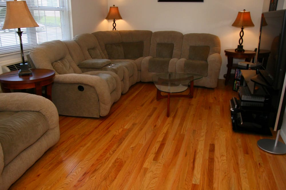 Cozy couch in spacious living room with TV at Cloverdale Associates