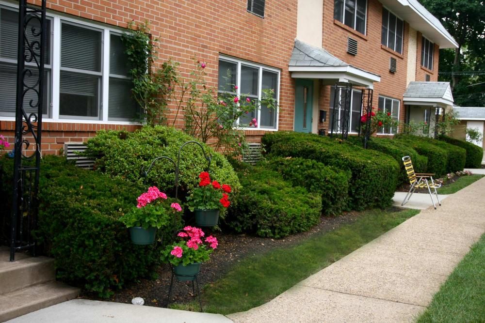 Beautiful shrubberies at Haddon Knolls Apartments