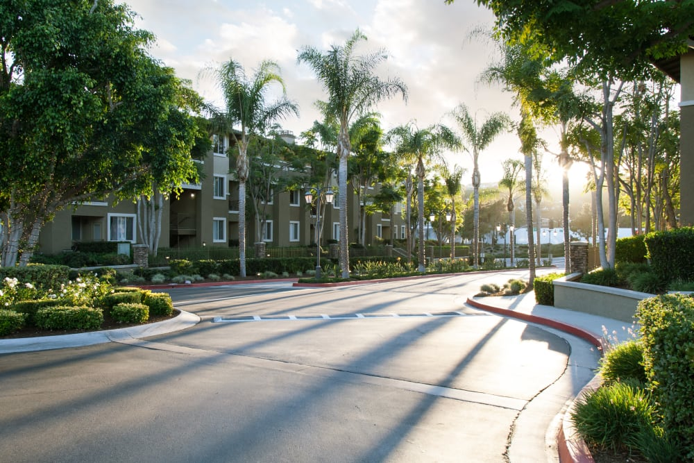 Beautifully manicured front entrance to Alicante Apartment Homes in Aliso Viejo, California