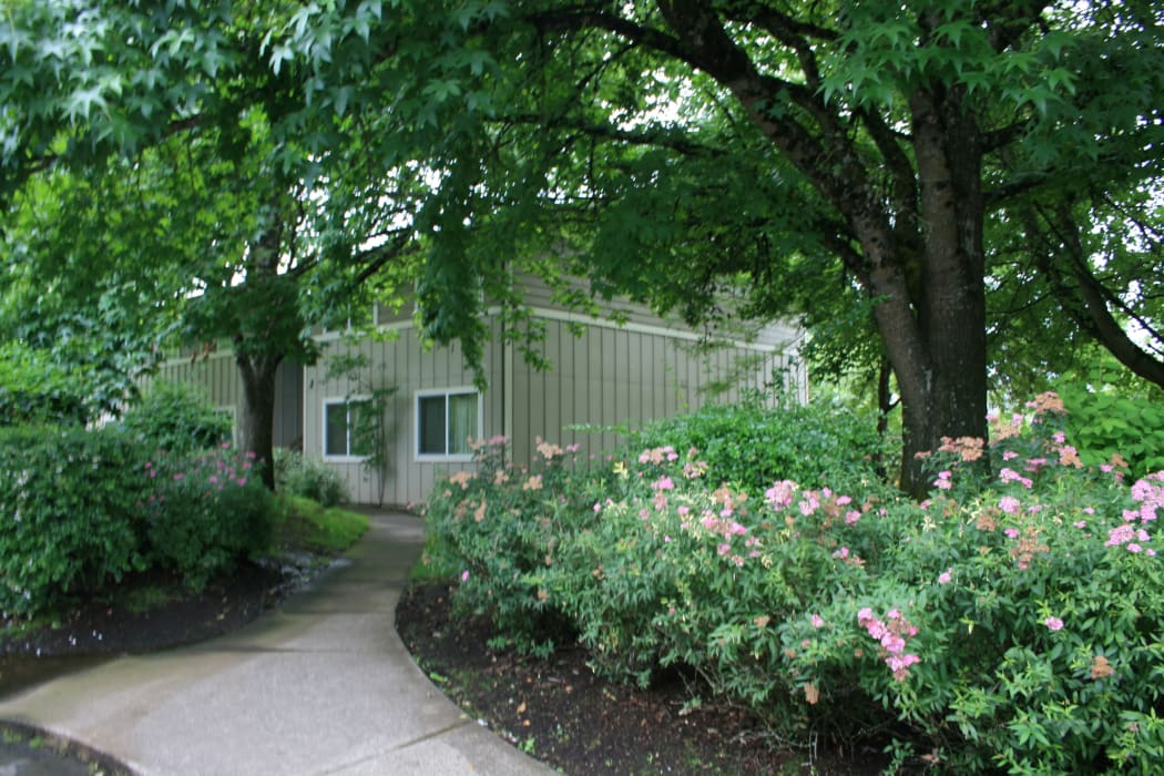 Enjoy beautiful green areas at Fountain Court in Springfield, OR