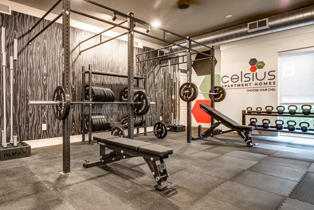 Well-equipped fitness center at Celsius Apartment Homes in Charlotte, North Carolina