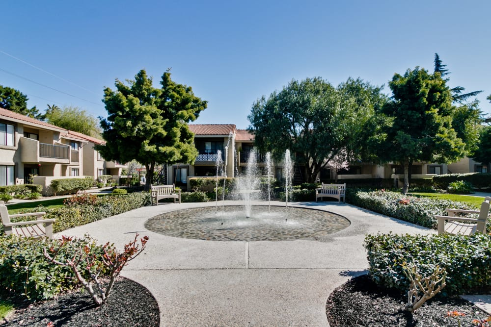 Water Fountain at Terra Willow Glen