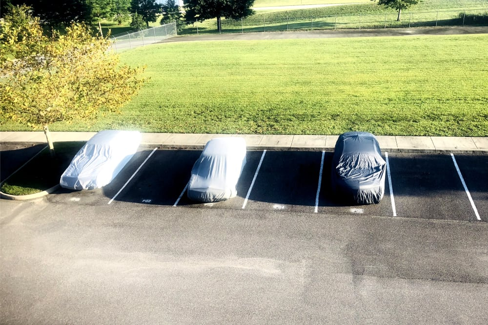 Outdoor parking spaces available for rent at Climatrol Self Storage in Williamsburg, Virginia