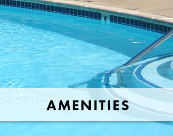 Features and amenities at King David Apartments