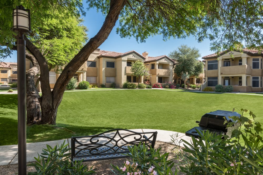 Large lawn with picnic areas and gas barbecue grills at Bellagio in Scottsdale, Arizona