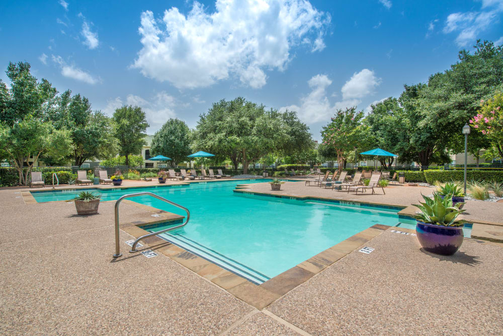 Enjoy a sparkling swimming pool on a sunny day at 23Hundred at Ridgeview in Plano, Texas