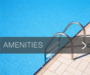 Find out about the amenities at Nexus Luxury Apartments in Virginia Beach, Virginia