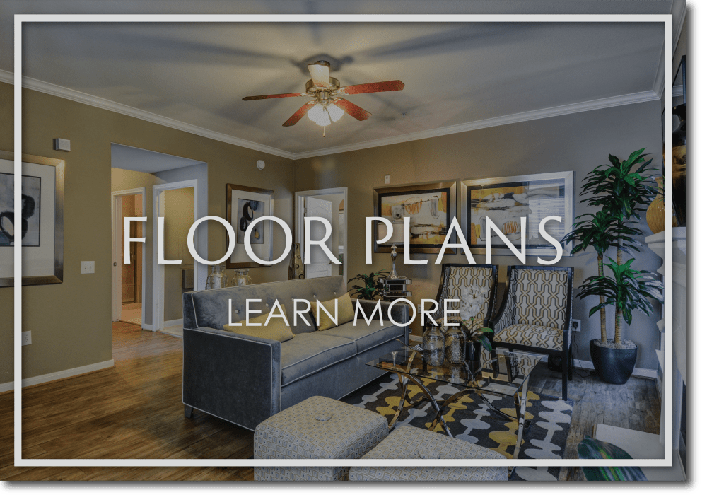 Link to floor plans at San Paloma Apartments in Houston, Texas
