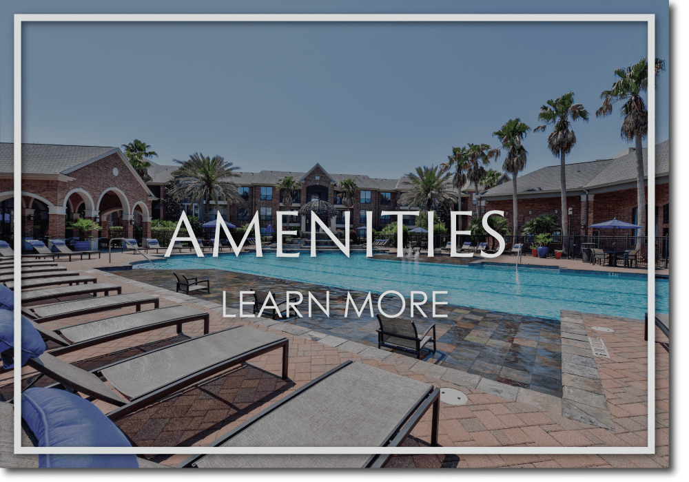 Link to amenities at San Paloma Apartments in Houston, Texas