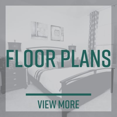 Link to floor plans at Amira at Westly in Tampa, Florida