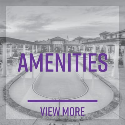 Link to amenities at Mezza in Jacksonville, Florida
