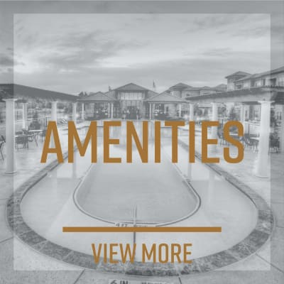 View our Amenities at Trails of Towne Lake in Irving, Texas