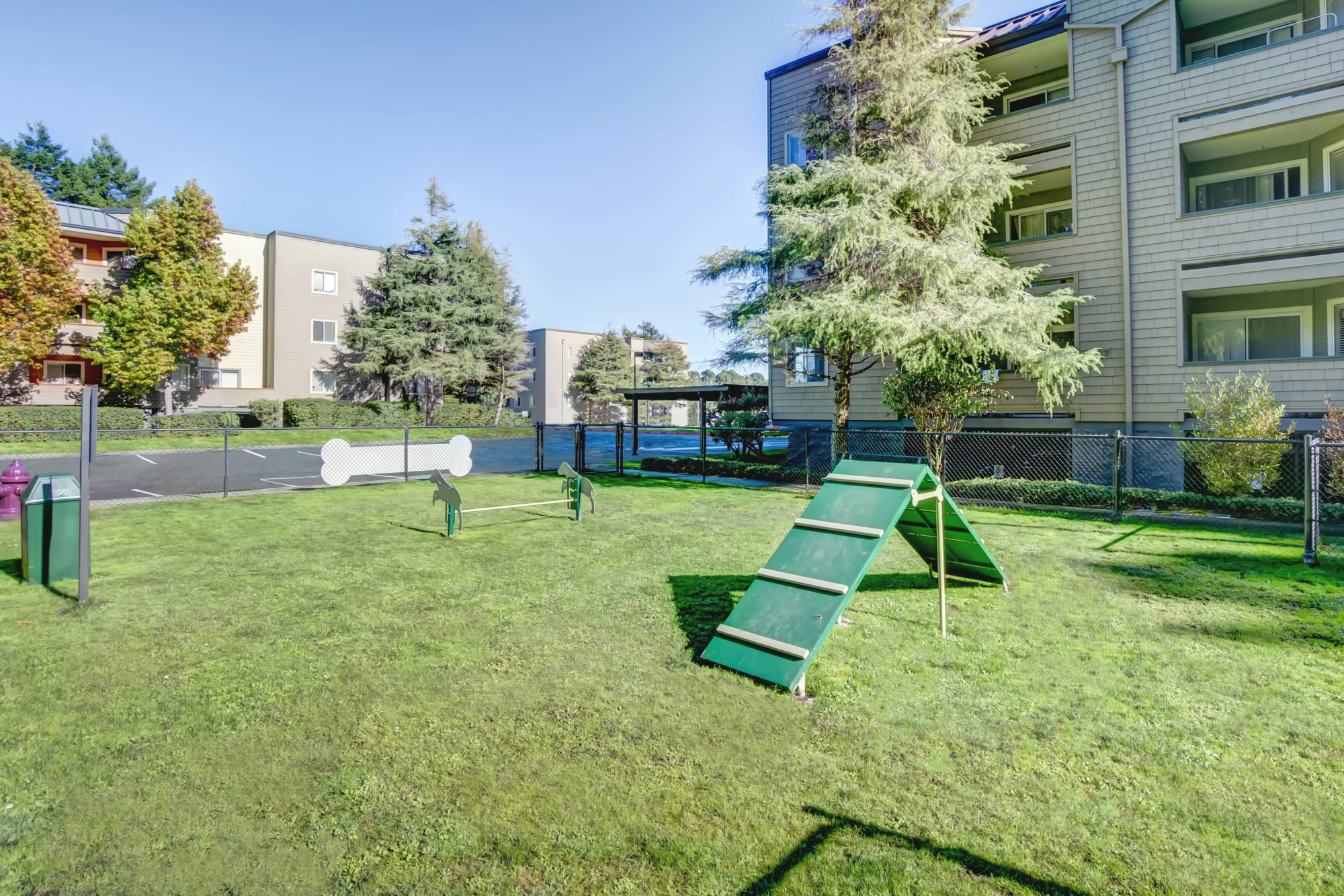 Bark Park with dog toys at Serramonte Ridge Apartment Homes