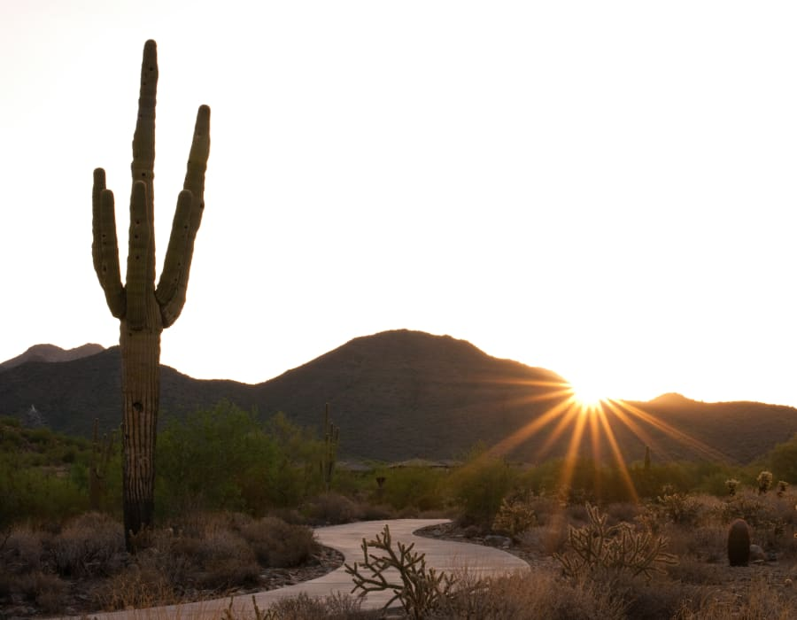 Sun rising over a desert landscape at The District at Scottsdale in Scottsdale, Arizona