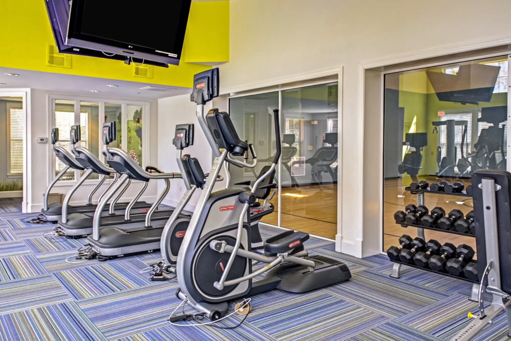 Fitness center at Provenza at Southwood in Tallahassee, Florida