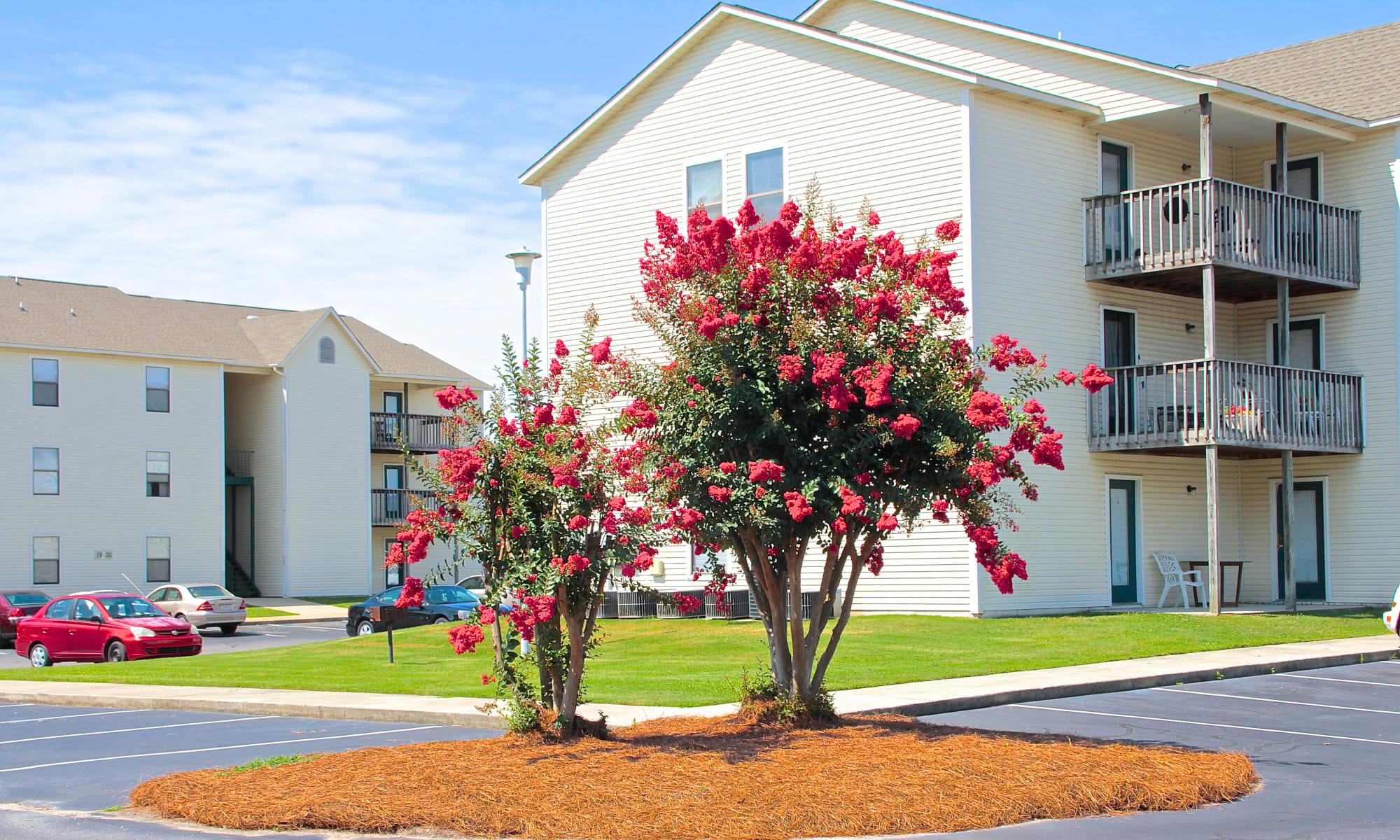Falcon Village Apartments apartments in Fayetteville, North Carolina