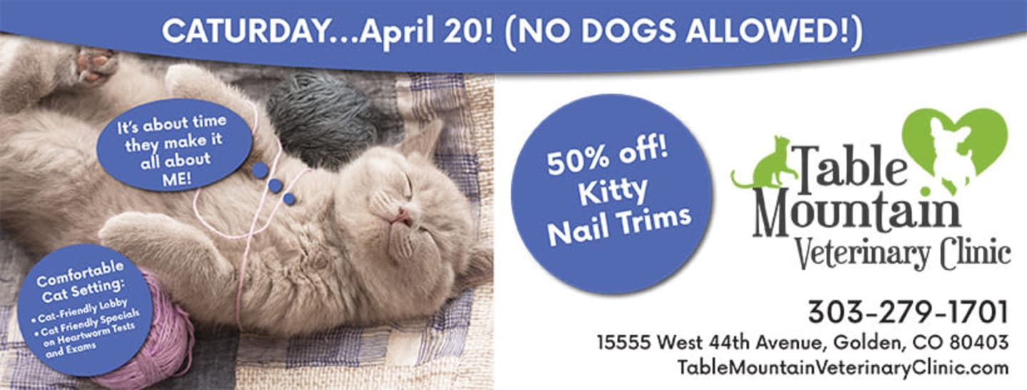 Cat day promotion at Table Mountain Veterinary Clinic